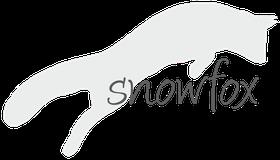 Snowfox Alloggio feline e Fotografia