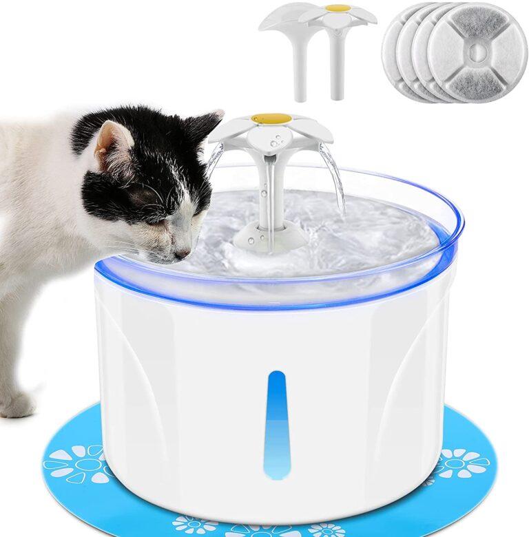Erogatore di Acqua potabile 2.5L