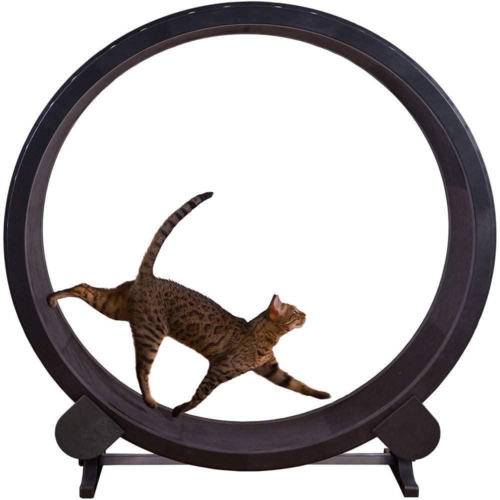 Grande Ruota del Gatto